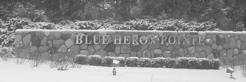 blue heron pointe